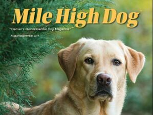 Free digital subscription to Mile High Dog magazine