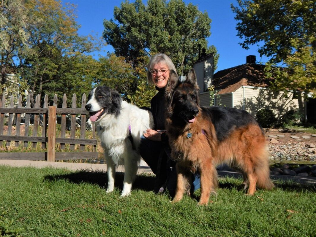Dog trainers Mile High Dog magazine recommends
