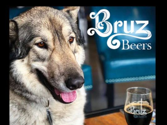 Photo of Bruz Beers ad from Mile High Dog magazine on our advertise with us page